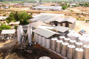 Kakamas Attractions   Palmhof Chalets   Orange River Wine Cellars